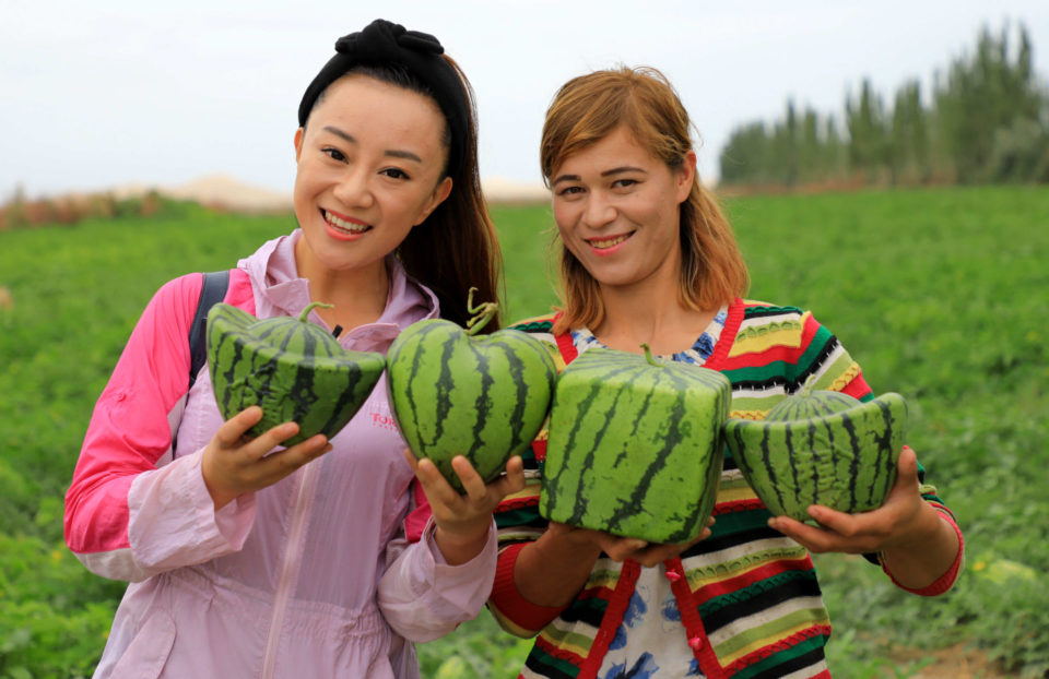 Watermelons1